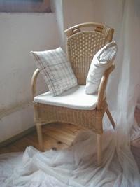 Stuhl ohne Mohdel
