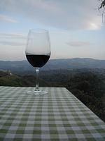 Einsamer Wein