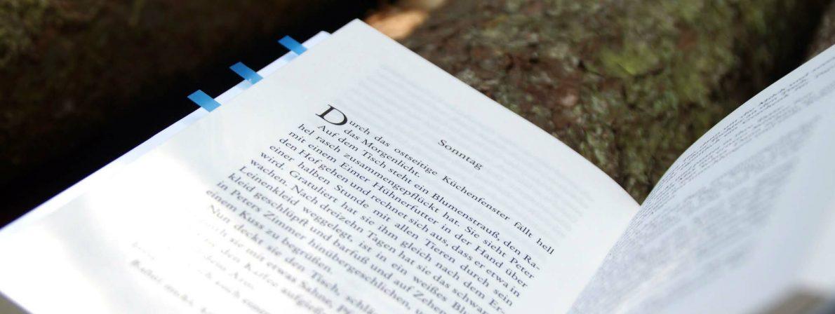 Die Kapitel sind in »Der Brand« in Wochen(-tage) untergliedert