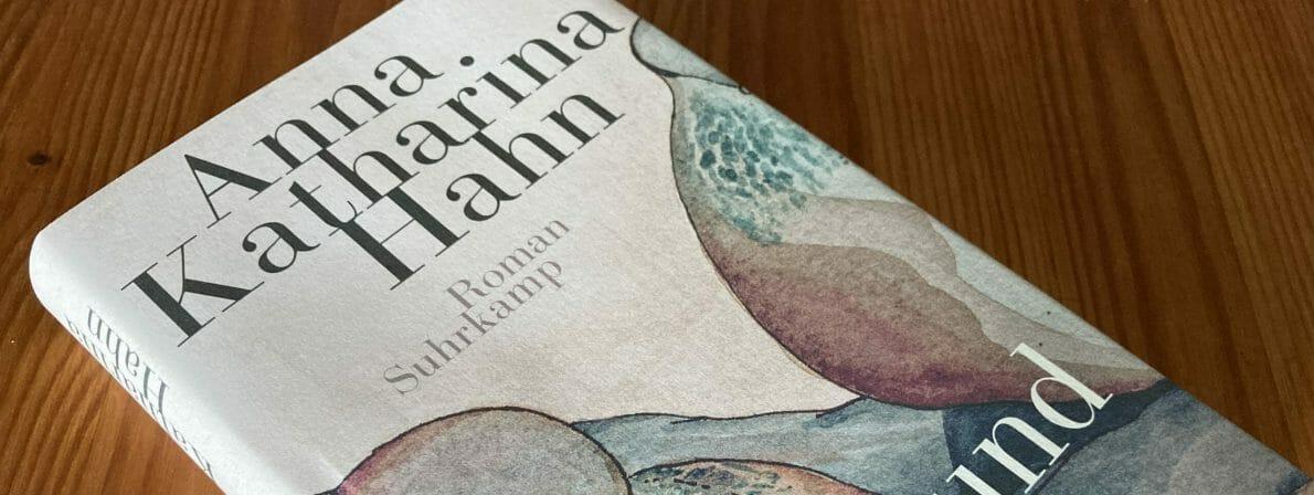 Anna Katharina Hahn: Aus und davon
