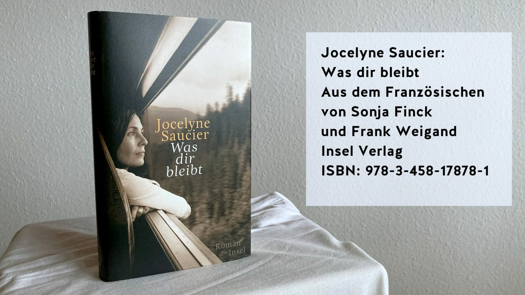 Jocelyne Saucier: Was dir bleibt