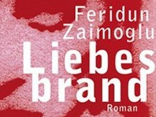 Feridun Zaimoglu: Liebesbrand