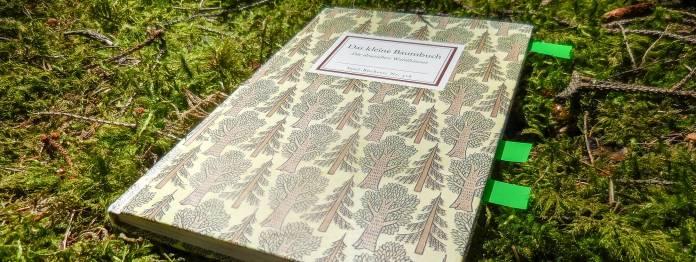 Das kleine Baumbuch (Insel-Bücherei)