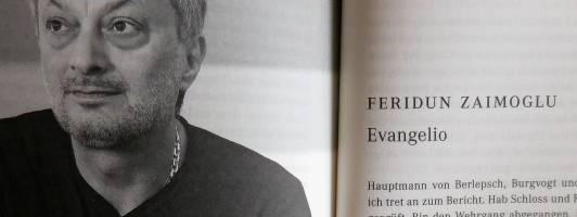 Maltes Meinung: Die Longlist zum Deutschen Buchpreis 2017 (3/5) 1