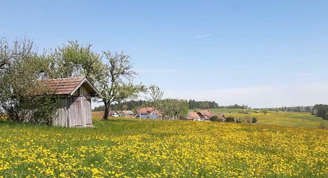 Einer der Seminarorte: Igelsberg im Schwarzwald