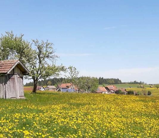 Der Seminarort: Igelsberg im Schwarzwald