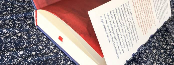»Überzogener Pappband mit umgeschlagener Klappe« nennt Hanser diese wunderbare Buchausstattung
