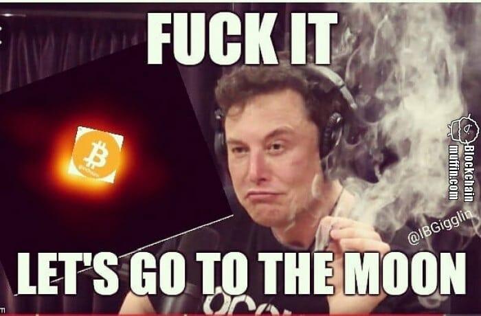 Elon Musk und der Mond