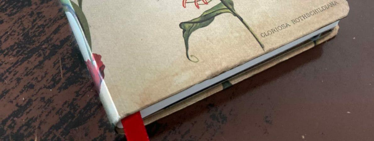 Mein Notizbuch