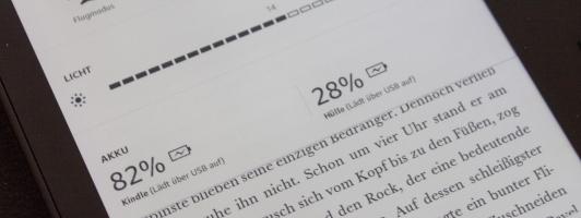 Die Software zeigt den Ladezustand der beiden Akkus in Prozent