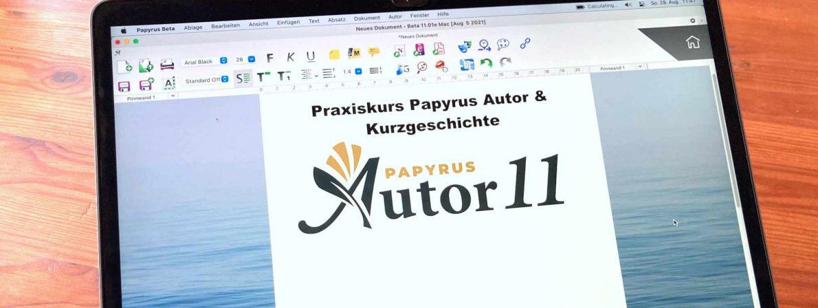 Webinar: Papyrus Autor & Kurzgeschichte