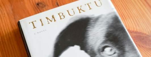 Austers Tiefpunkt: Die Hundegeschichte »Timbuktu«