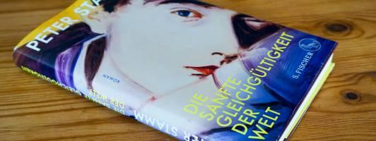 Cover und Buch: Peter Stamm: Die sanfte Gleichgültigkeit der Welt