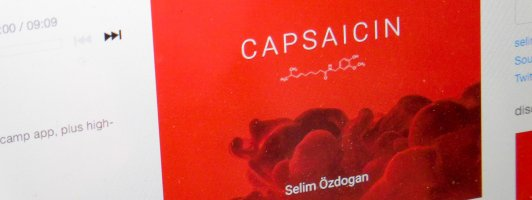 Nur im Netz: »Capsaicin« von Selim Özdoğan
