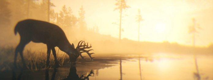 Starkes Symbol: Immer wieder taucht ein Hirsch auf