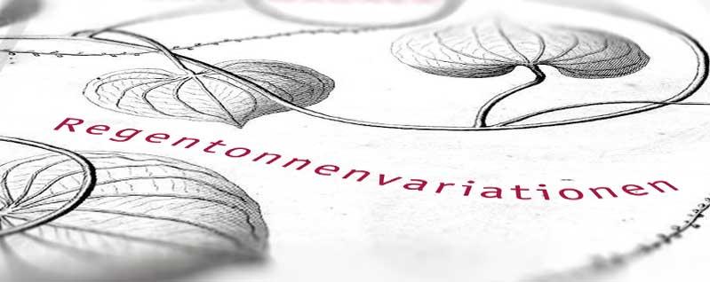 Coverausschnitt unter der Lupe: Regentonnenvariationen
