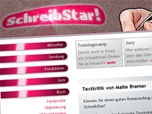 Malte Bremer bespricht Romananfänge auf SchreibStar.tv