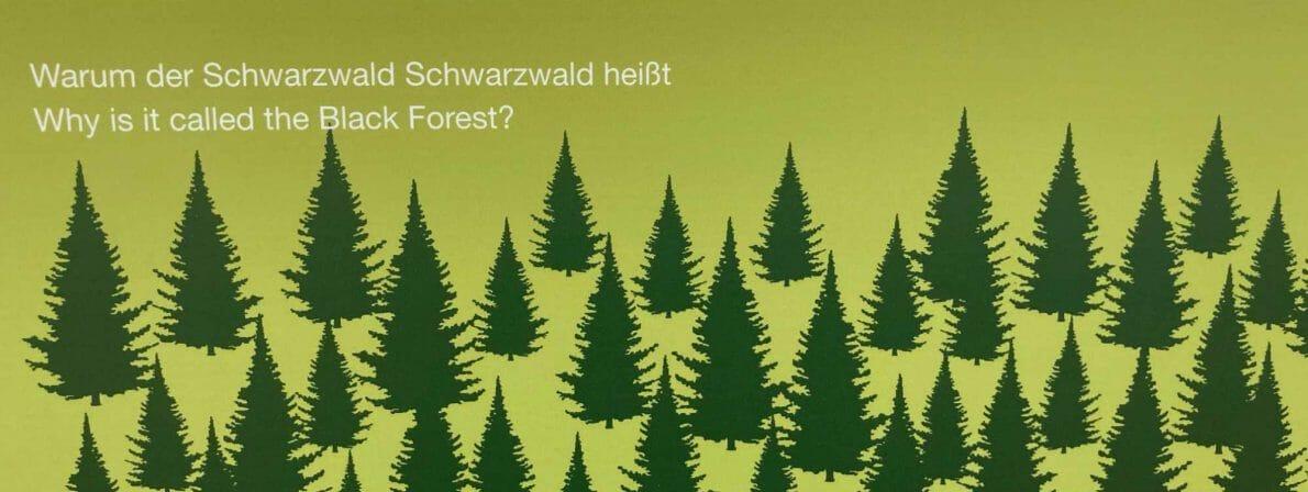Ohne Wald geht hier nix: Die Doppelseite über die Bäume