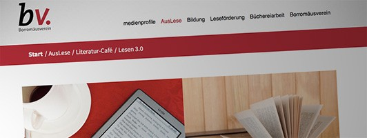 Screenshot Borromäusverein