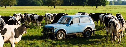 Eine gewichtige Nebenrolle: Der himmelblaue Lada