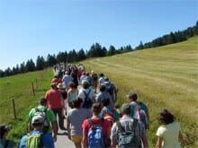Wandern mit Fanny am Feldberg. Gut 70 Leute sind unterwegs.