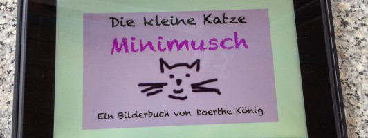 Kinderbuch als E-Book auf dem Kindle Fire