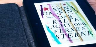 Kindheitshölle in der literarischen Zwickmühle: »Das kalte Licht der fernen Sterne« von Anna Galkina