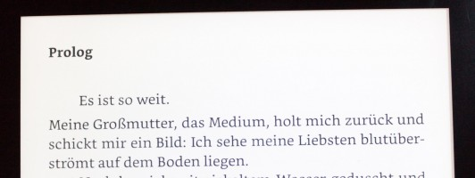 B.C. Schiller: Totes Sommermädchen
