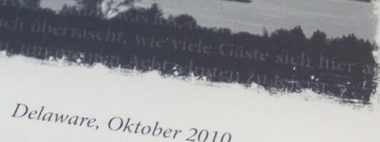 Nein, die graue Schrift auf Schwarz ist kein Grafik-Element, sondern der Ghosting-Effekt des Displays, da der zuvor angezeigte Text nicht komplett entfernt wurde.